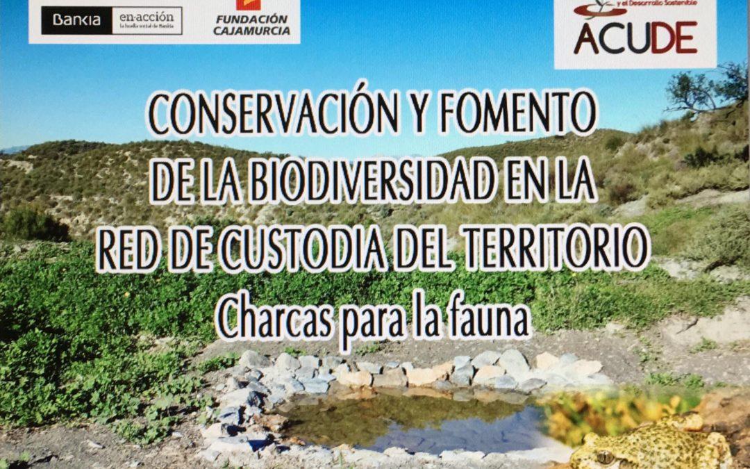 ACUDE PLANTA MIL METROS DE SETOS EN LA SIERRA DE LA ALMENARA Y LOMAS DE AGUADERAS
